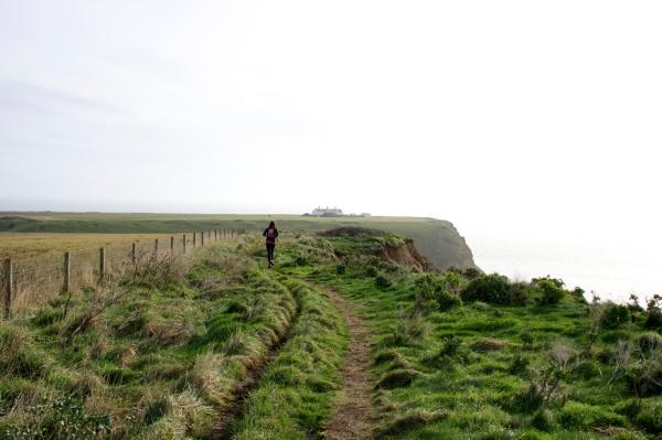 Dorset Jurrasic Coast winter bog - 093