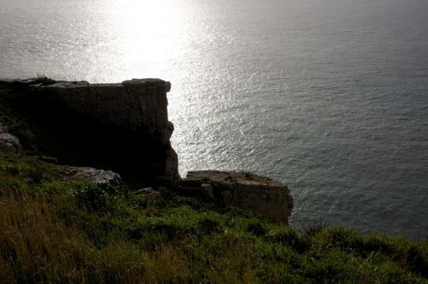 Dorset Jurrasic Coast winter bog - 106