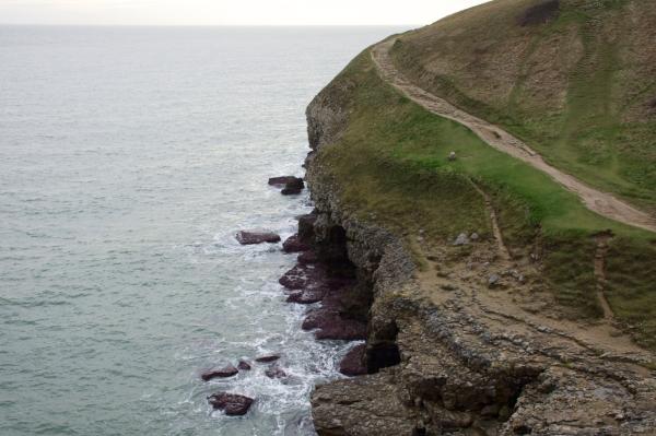 Dorset Jurrasic Coast winter bog - 142