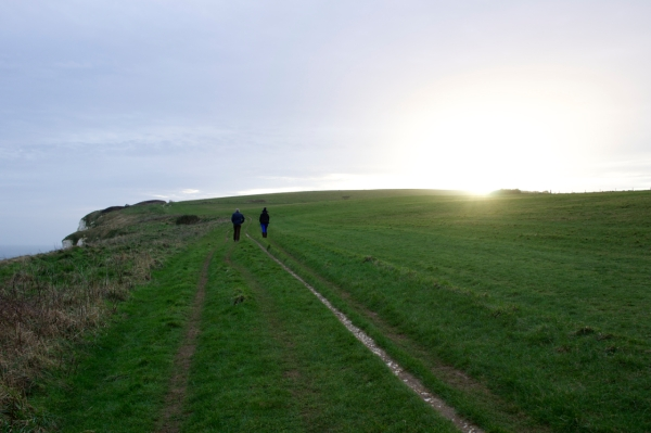 Dorset Jurrasic Coast winter bog - 157
