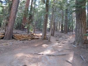Western States and Yosemite 2012 - 05